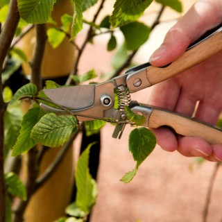 Garden Secateurs With Pouch