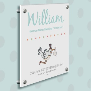 New baby presents baby gifts baby gift ideas personalised baby personalised baby boy illustrated stork gallery print negle Images